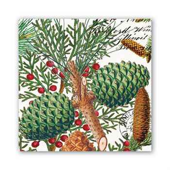 Spruce Paper Luncheon Napkins